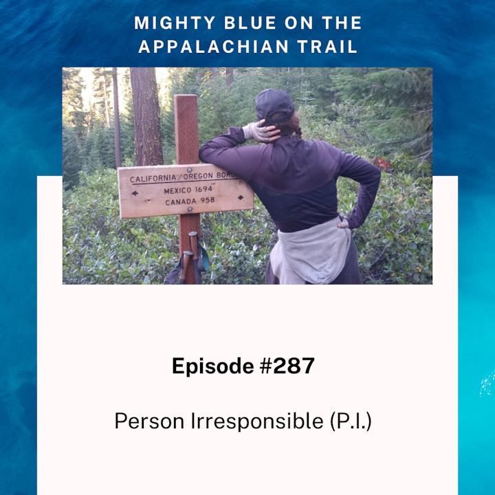 Episode #287 - Person Irresponsible (P.I.)