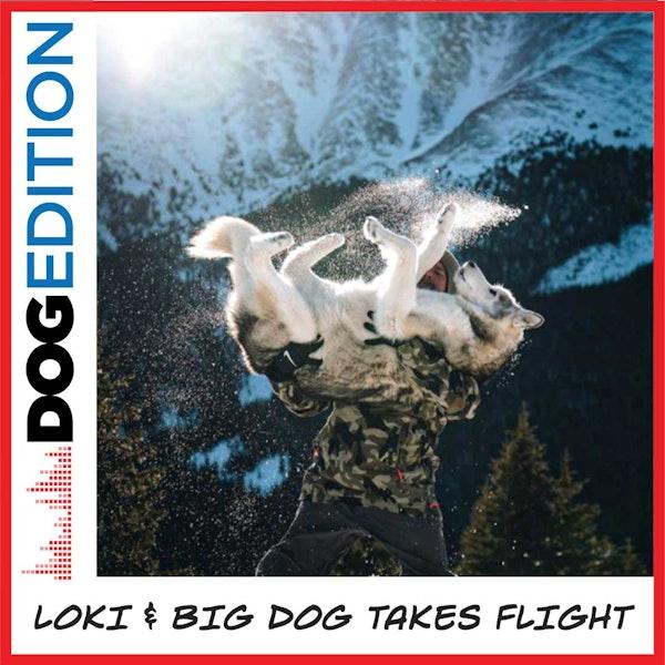 Loki & Big Dog Takes Flight | Dog Edition #3