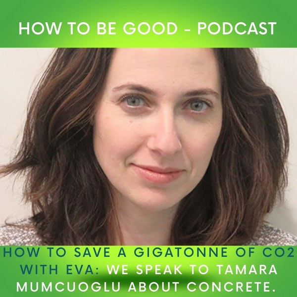 How to save a Gigatonne of CO2 with EVA: we speak to Tamara Mumcuoglu about concrete.
