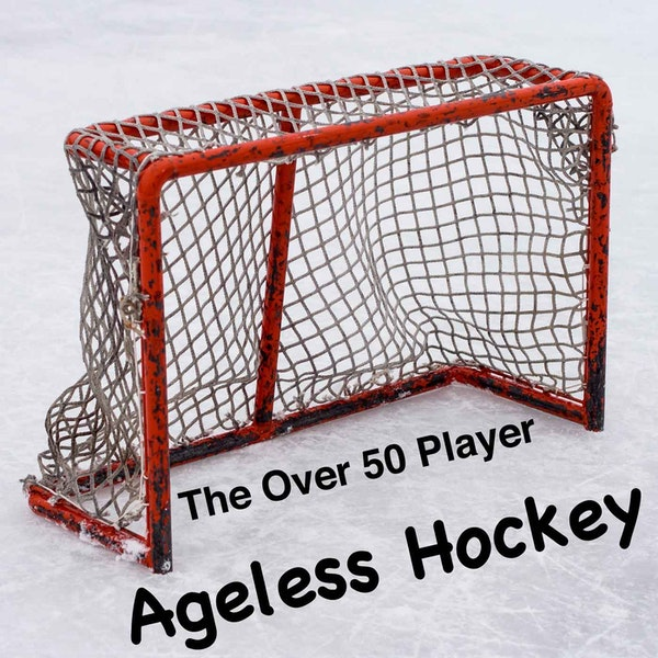 Agless Hockey Image