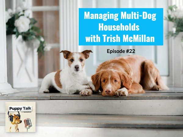 Managing Multi-Dog Households with Trish McMillan