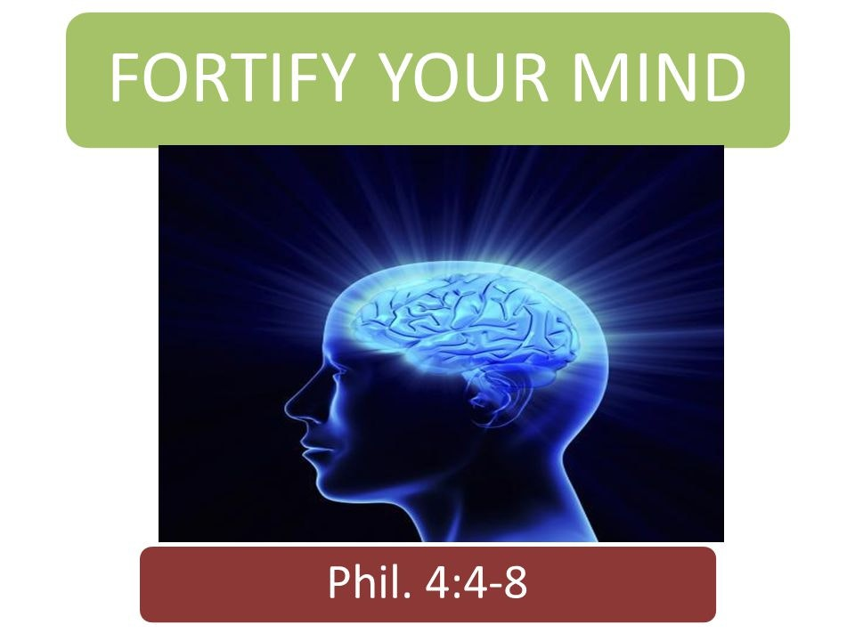 How to Fortify Your Mind