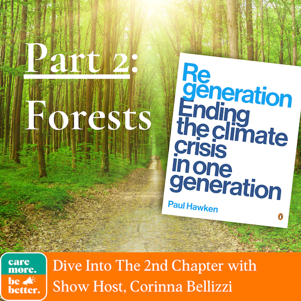 Regeneration Part 2: Forests And Their Role In Climate Change