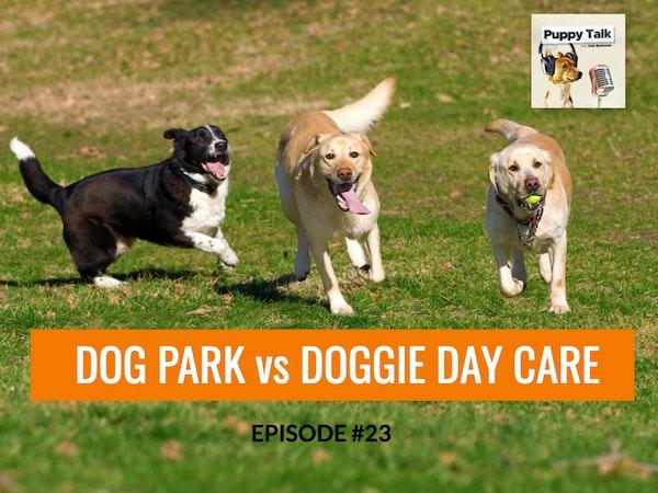 Dog Parks vs Doggie Day Care