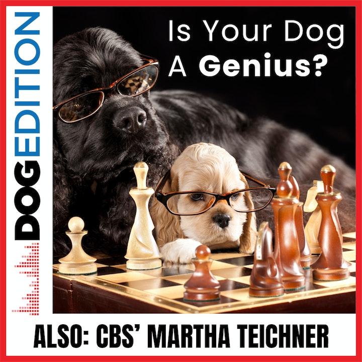 Is Your Dog A Genius? | CBS' Martha Teichner | Dog Edition #28