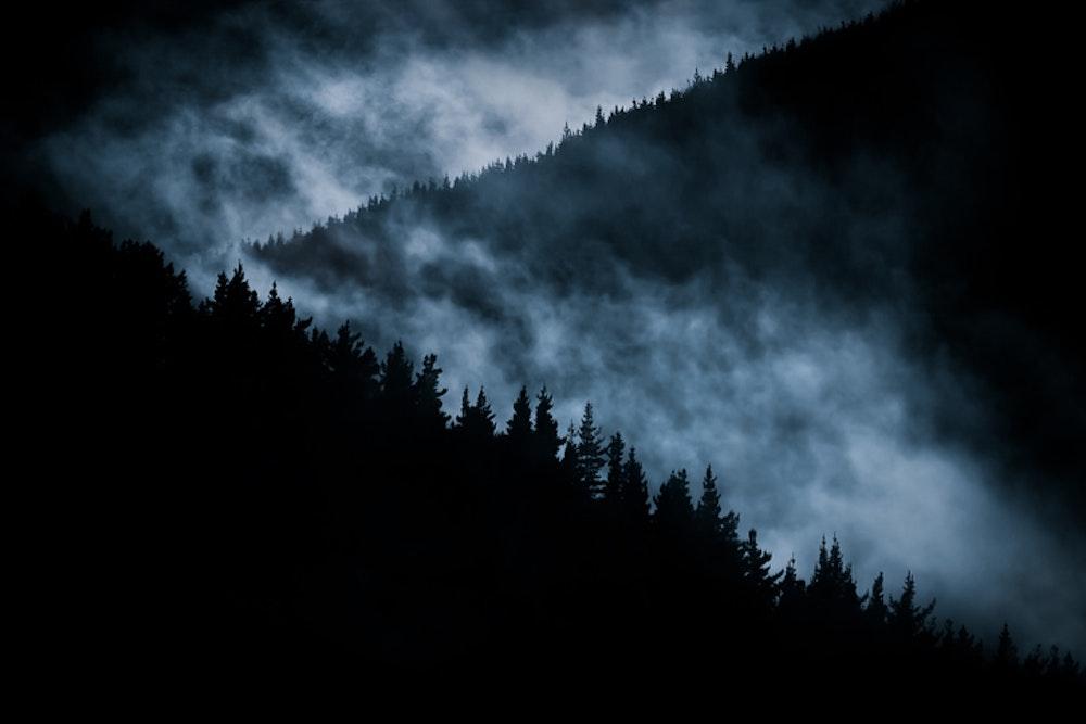 Bigfoot: Stories of Terror in the Woods - Vol. 2