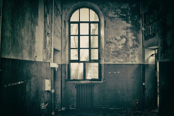 Asylum of The Dead Image