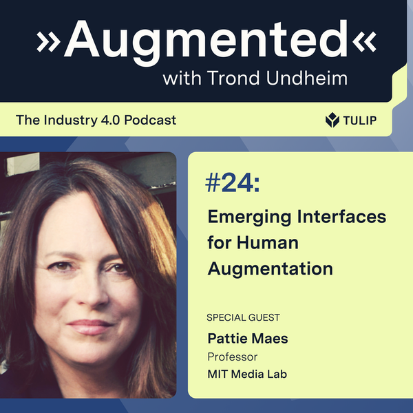 Emerging Interfaces for Human Augmentation Image