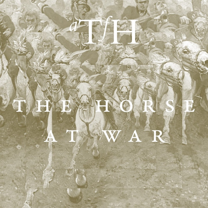The Horse at War