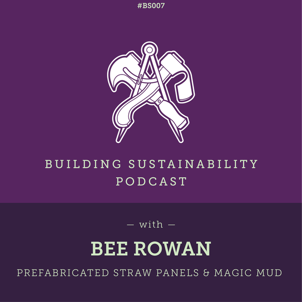 Prefabricated straw panels & magic mud - Bee Rowan Image