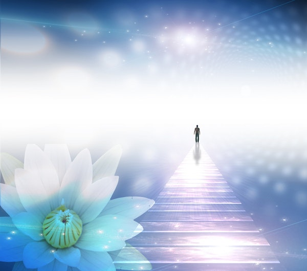 Ascension 101: A Guide Book for Your Soul