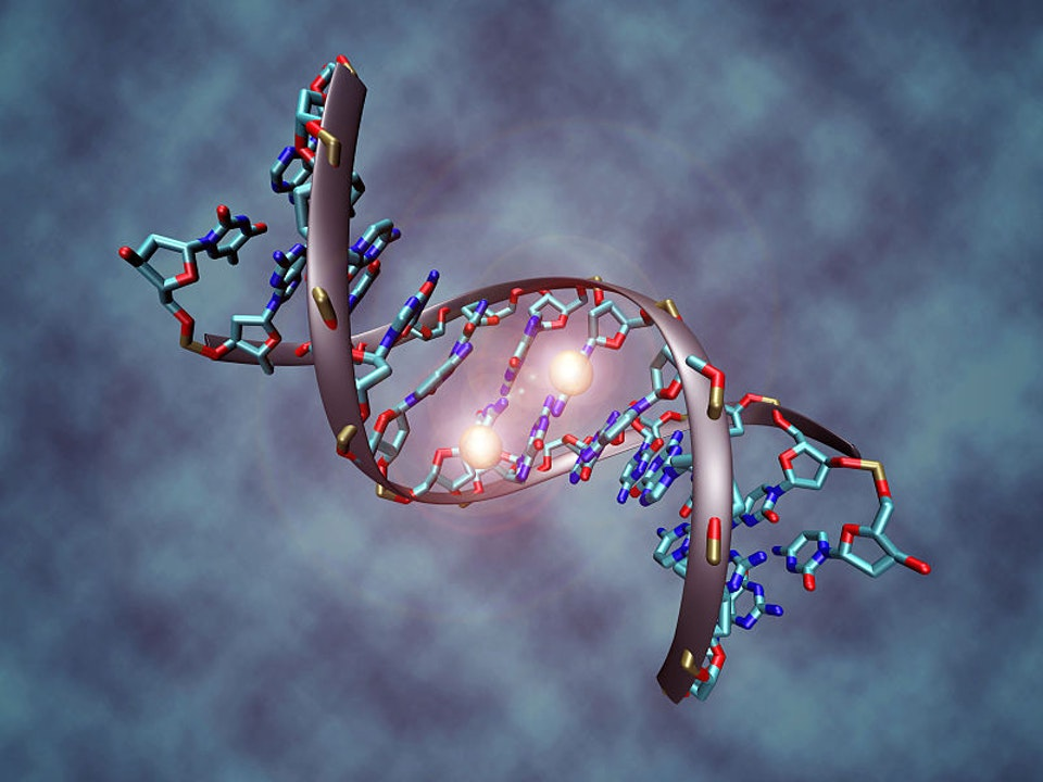 The DNA of Sin (Part One)