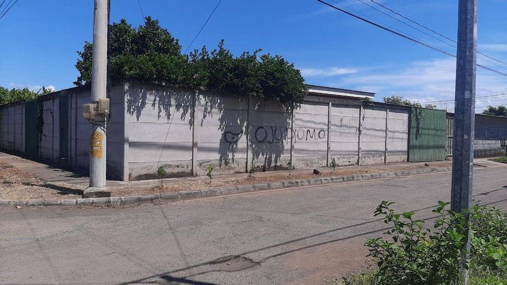 Directora de La Lupa denuncia pintas en su vivienda