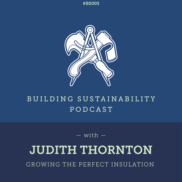Growing the perfect insulation - Judith Thornton Image
