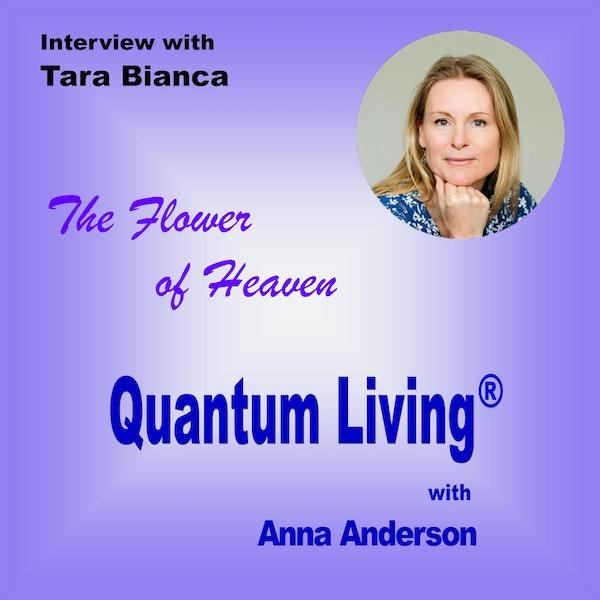 The Flower of Heaven with Tara Bianca | QL036 Image