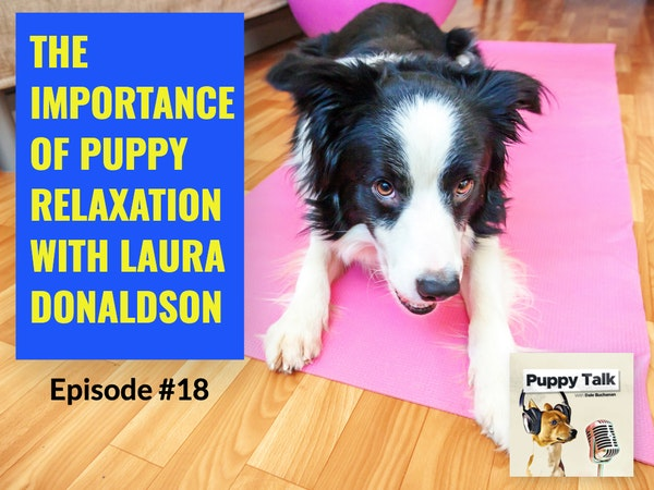 The Importance of Puppy Relaxation with Laura Donaldson