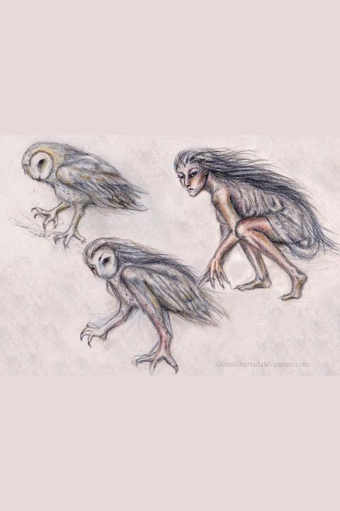 La Lechuza (the Witch Owl)