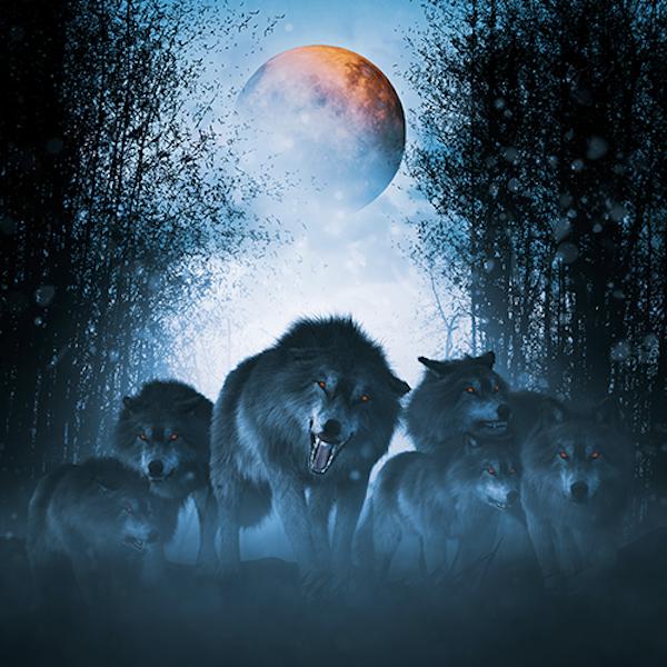 56: I Plead Moon Madness Image