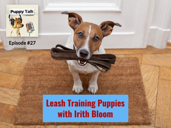 Leash Training Puppies with Irith Bloom
