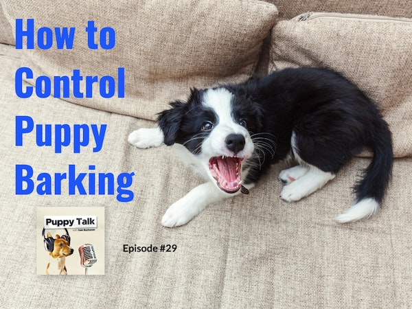 How to Control Puppy Barking