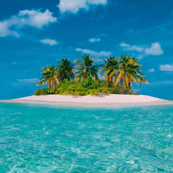 Episode of Requirement: The Wilsons' Desert Island Picks!