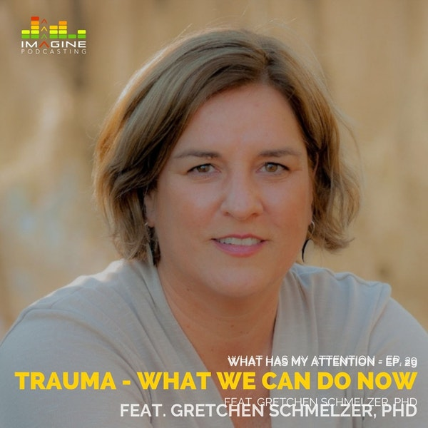 WISL 29 Women in Strong Leadership: Trauma - What We Can Do Now with Gretchen Schmelzer, PhD