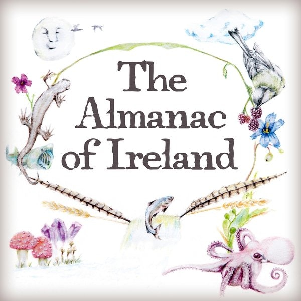 An Almanac Extra: Imbolc, St. Brigid's Day