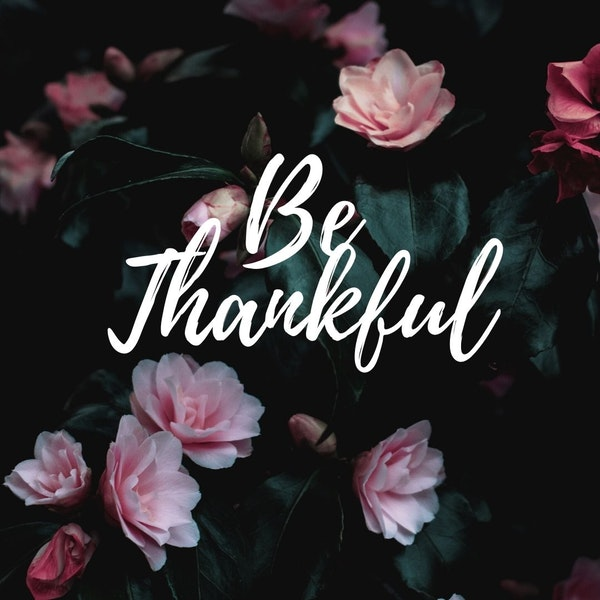 Be Thankful For The Love You Receive Image