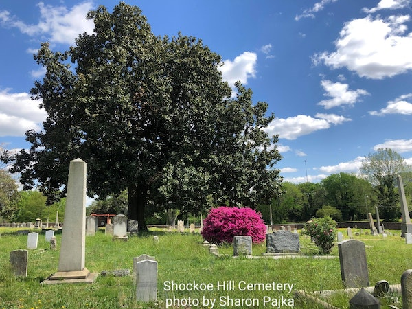 Episode 53 - Happy One Year Anniversary Ordinary Extraordinary Cemetery Podcast! Image