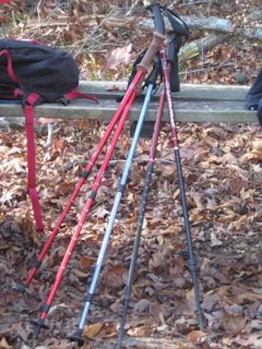 Episode #27 Lagniappe - The Joy of Hiking Poles