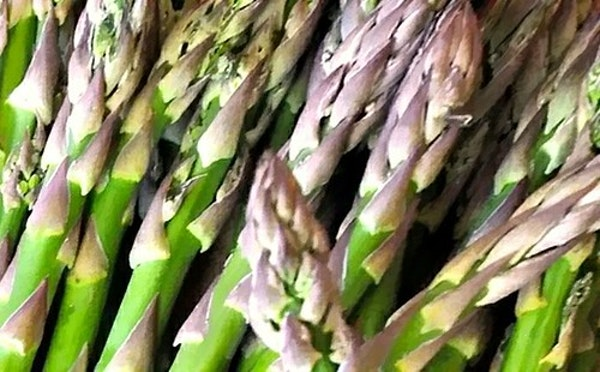 Episode 128: The Great Asparagus Pee Challenge Image