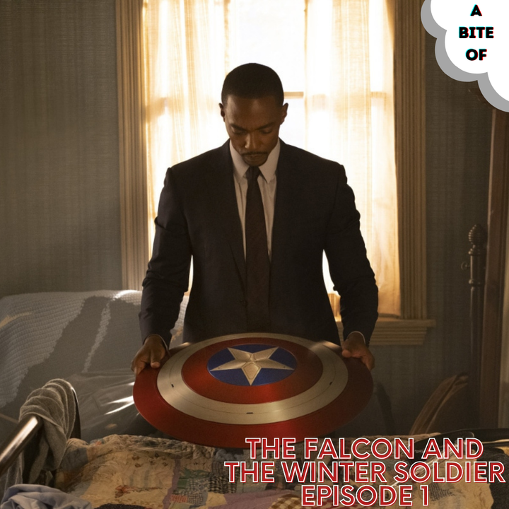 The Falcon and The Winter Soldier: New World Order   Marvel
