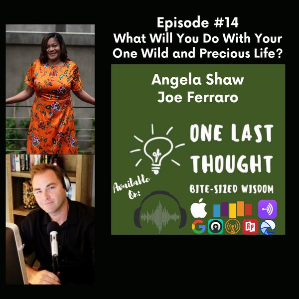 What Will You Do With Your One Wild and Precious Life? - Angela Shaw, Joe Ferraro - Episode 14