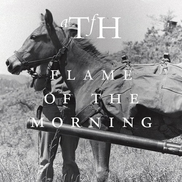Flame of the Morning Image