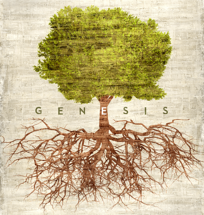 THE DOCTRINAL VALUE OF THE FIRST CHAPTERS OF GENESIS