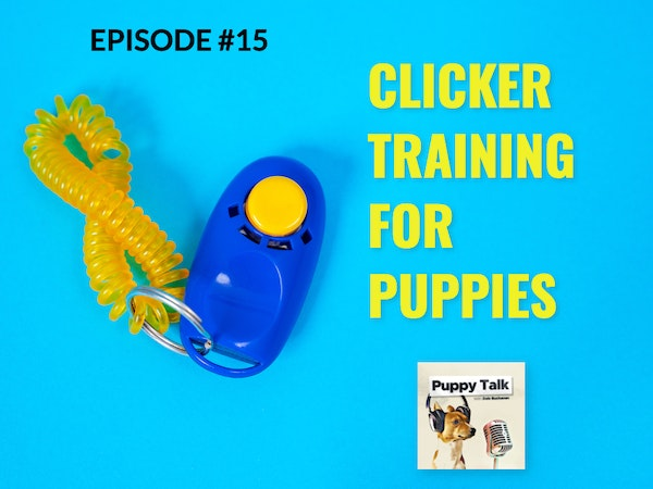 Clicker Training for Puppies