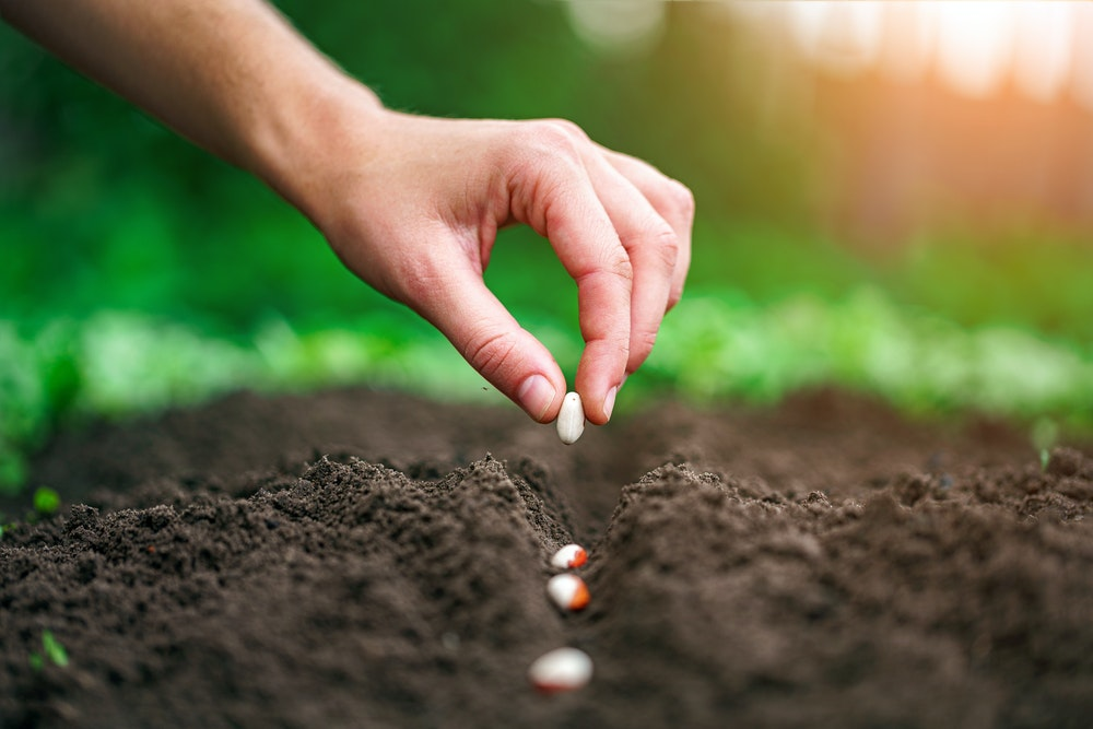 Closing Thought of the Week: Planting Seeds of Success - E29
