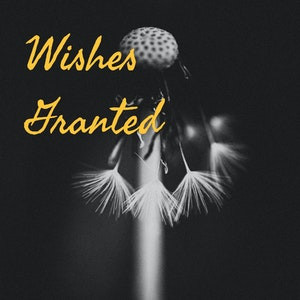 Wishes Granted