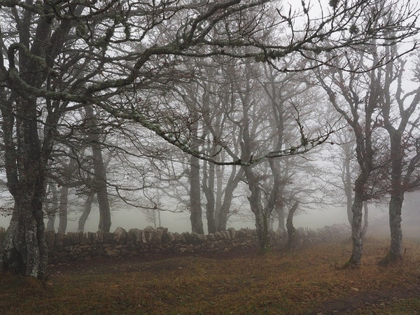 Haunted Burial Mounds