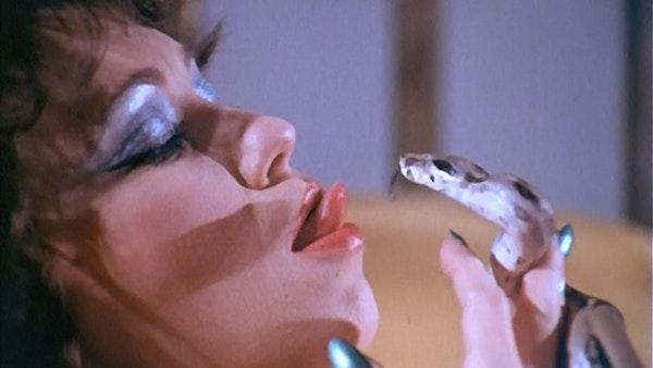 #94- The Devil In Miss Jones Image