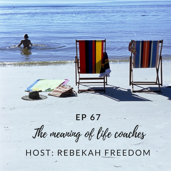 The Meaning of Life Coaches - HNS067 Image