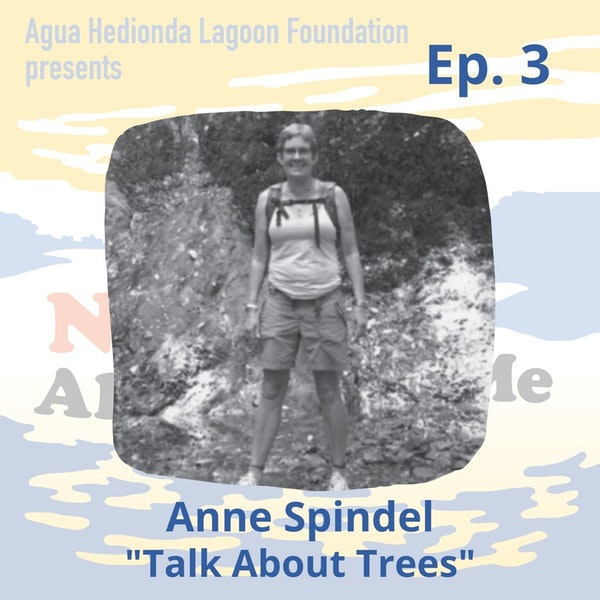 Ep. 3 Anne Spindel: Talk About Trees Image