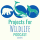 Projects for Wildlife Podcast Album Art