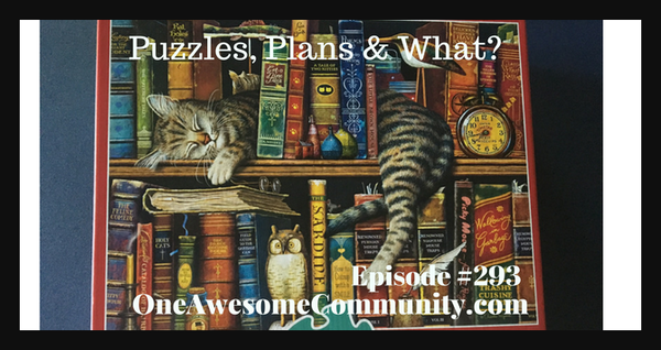 OAC 293 Puzzles, Plans and What?