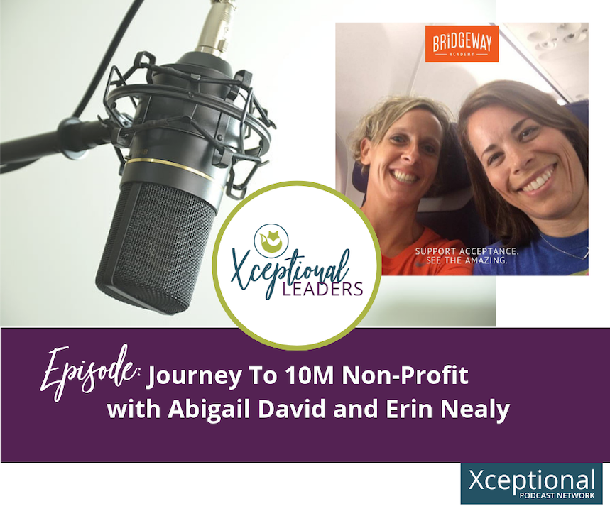 Journey to 10M Non-Profit with Abigail David and Erin Nealy