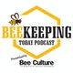Beekeeping Today Podcast Album Art
