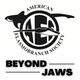 Beyond Jaws Album Art