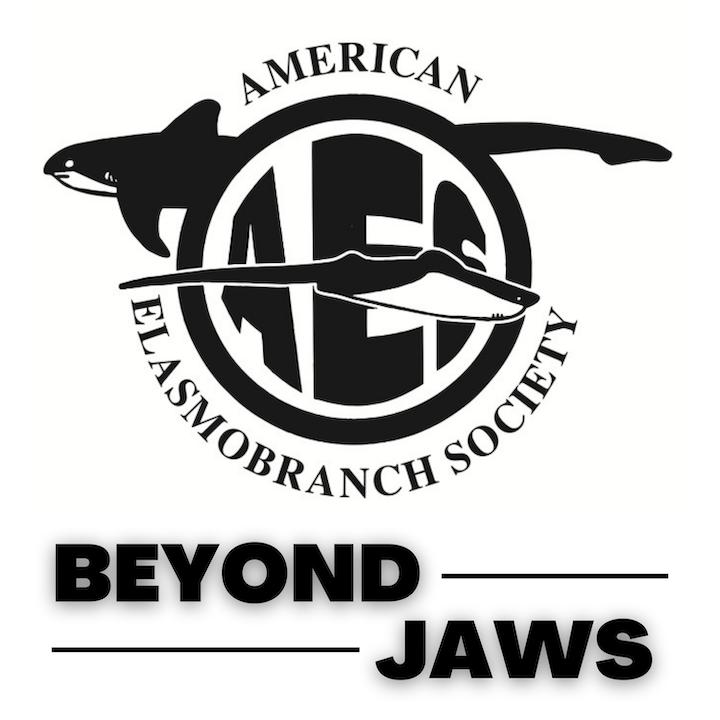 Beyond Jaws