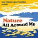 Nature All Around Me Album Art