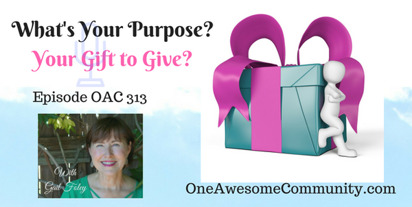 OAC 313 What's Your Purpose?  Your Gift to Give?
